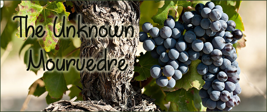 The unknown Mourvedre