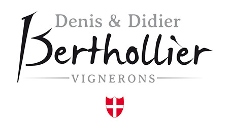Denis & Didier Berthollier