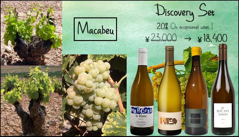 Macabeu Discovery Set